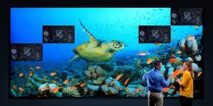 """Barco UniSee – nowatorska platforma bezramkowych ścian graficznych LCD 55"""""""